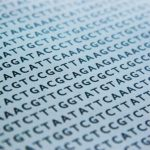 Your Computer Data Stored … On DNA?