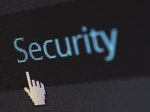 Domain Security